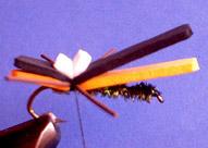 Chernobyl Ant Chernobyl-ant-fly-15