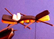 Chernobyl Ant Chernobyl-ant-fly-18