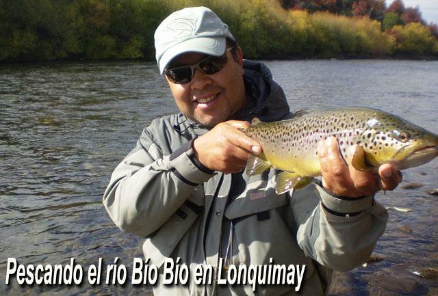 Pescando el río Bío Bío en Lonquimay